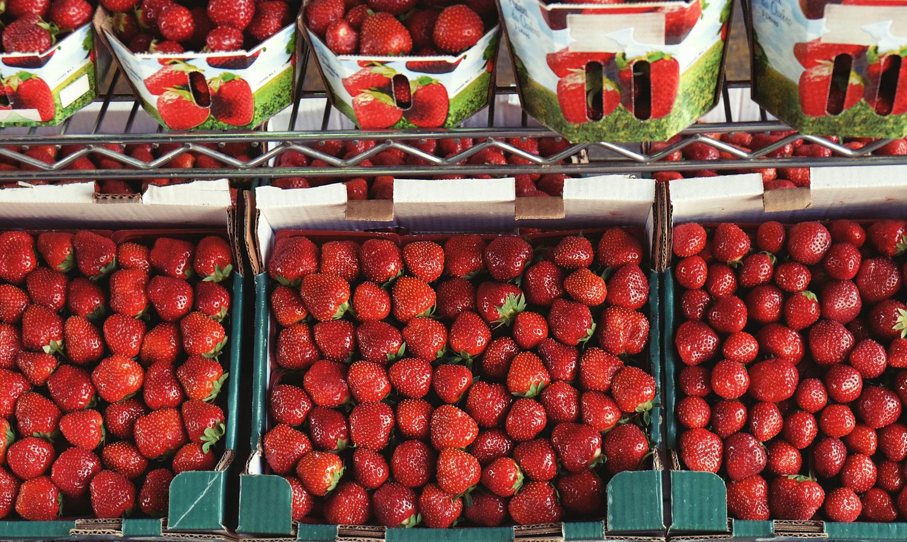 Frutas orgánicas: una excelente elección