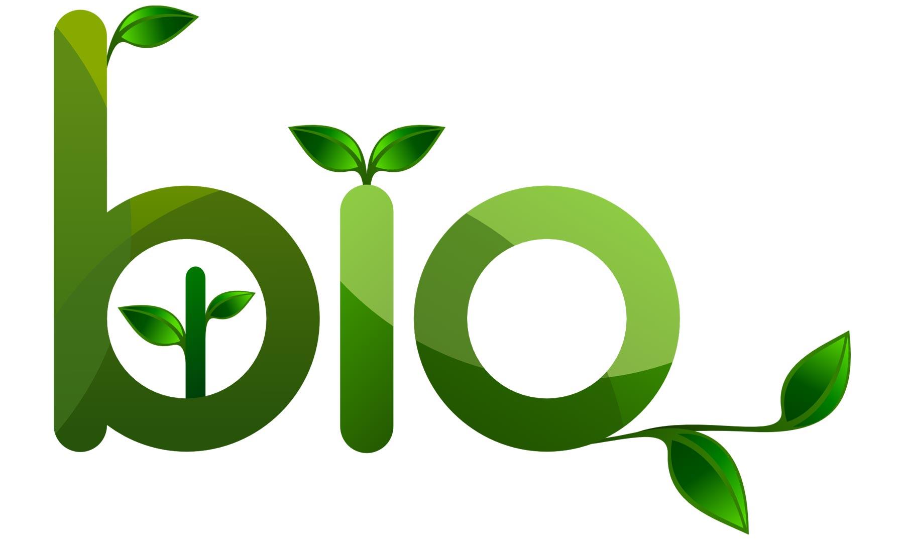 Alimentos ecológicos y buena salud
