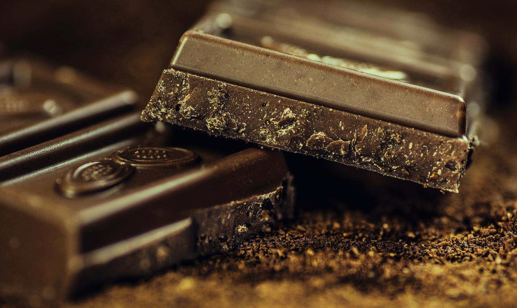 Cacao: el ingrediente que te hará feliz