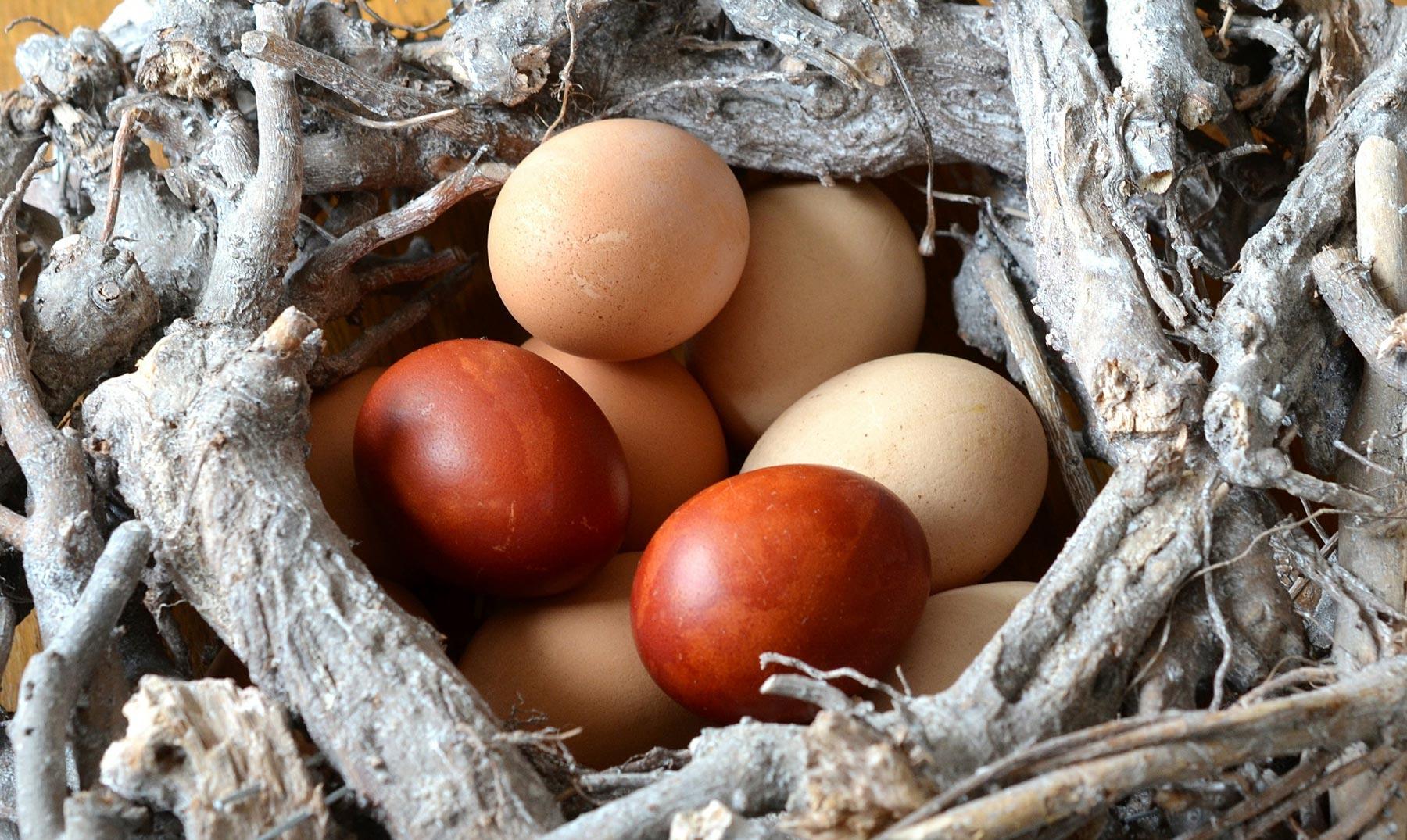 Huevos, un superalimento