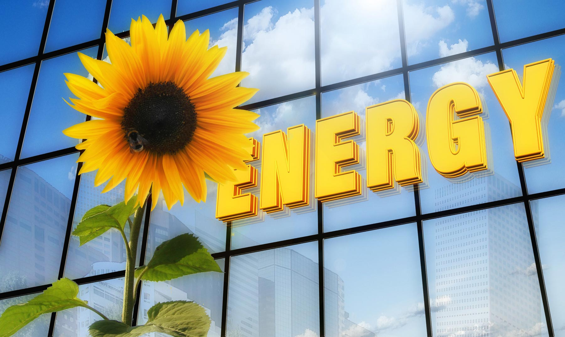 La celda solar más eficiente del mundo
