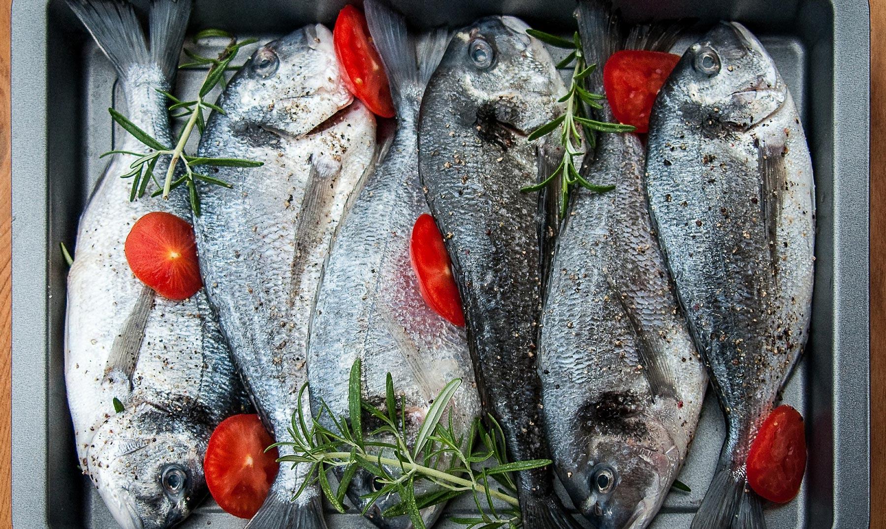 El pescado: calidad alimenticia sustentable