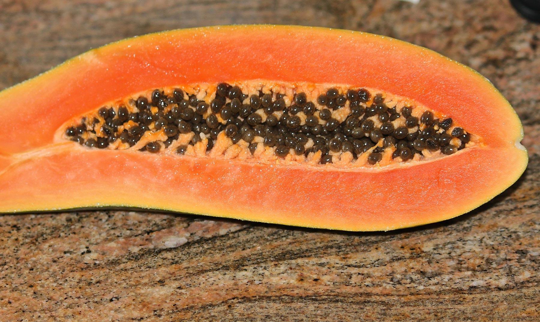 Bondades secretas de la papaya tropical