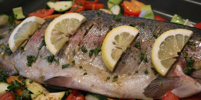 salmon-trout