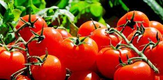 5 Beneficios de la alimentación ecológica