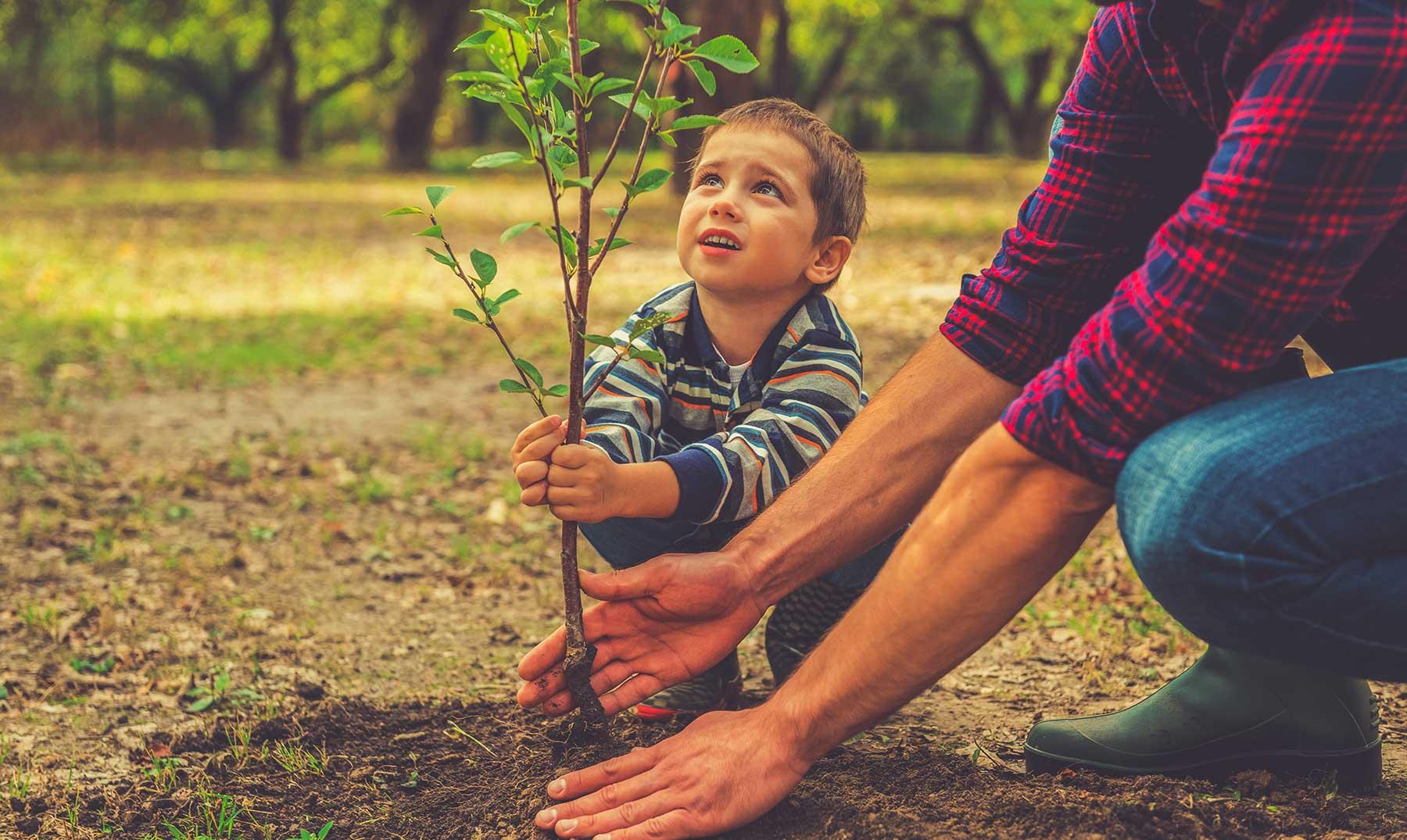 30 frases del medio ambiente para protegerlo de la actividad humana