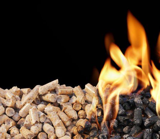 Biocombustibles: ventajas del carbón vegetal y los pellets 1