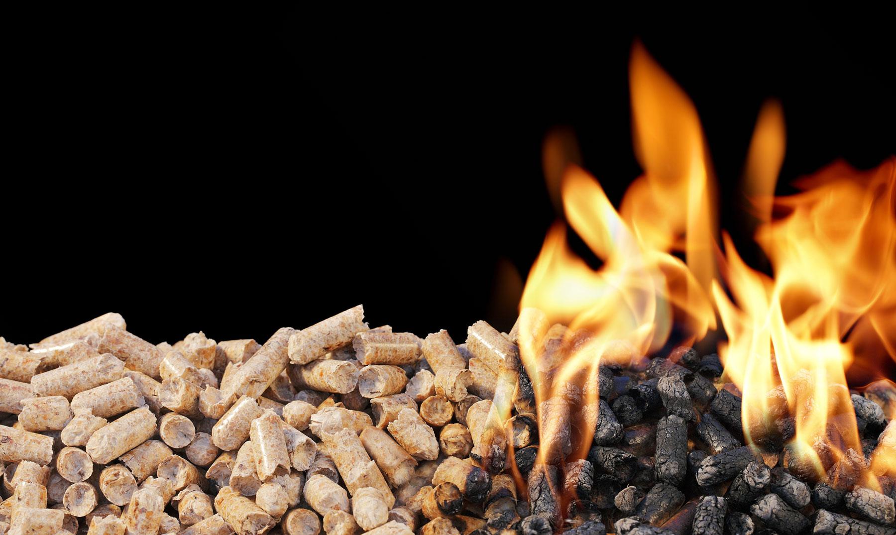 Biocombustibles: ventajas del carbón vegetal y los pellets