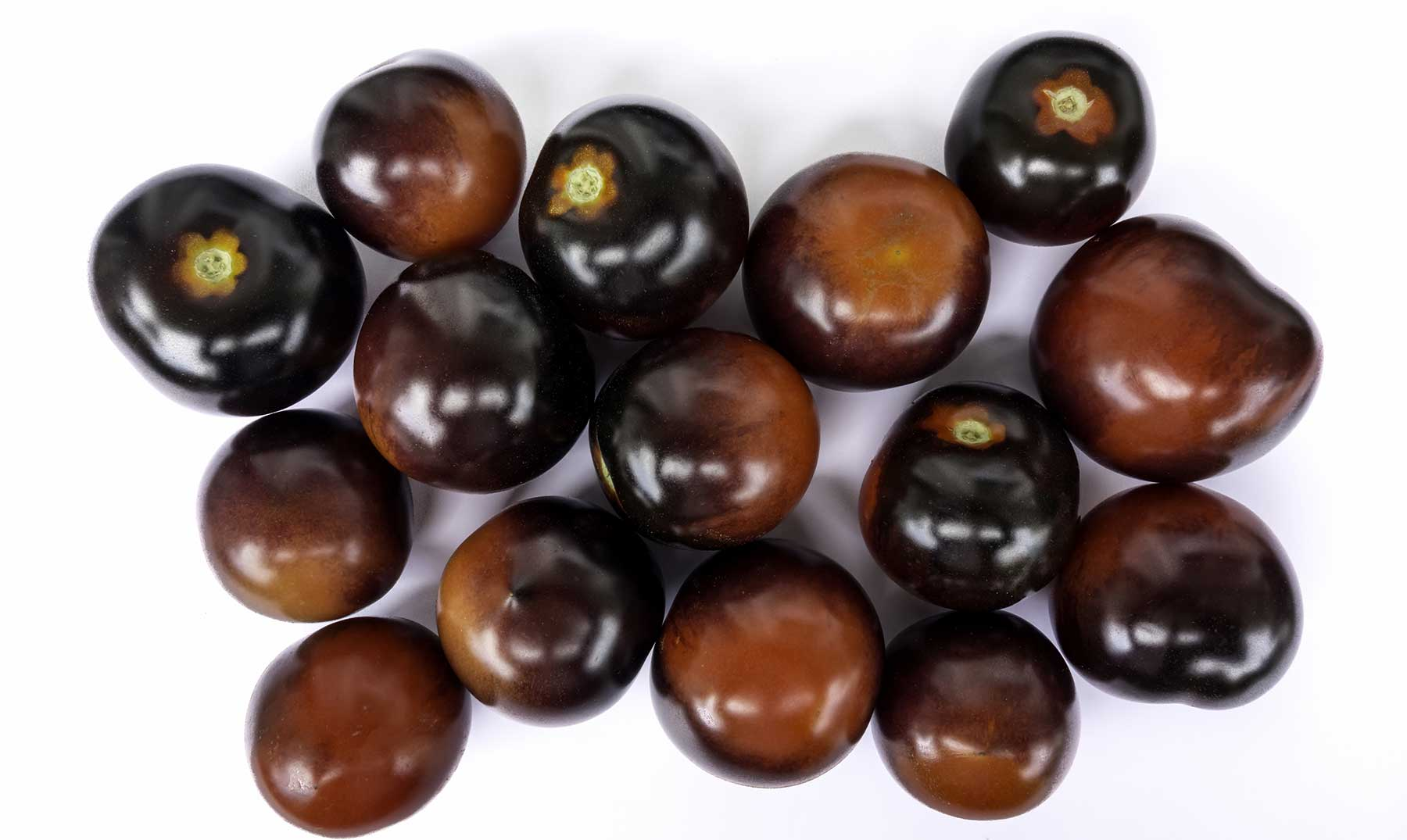 Tomate negro: sus poderes sanadores