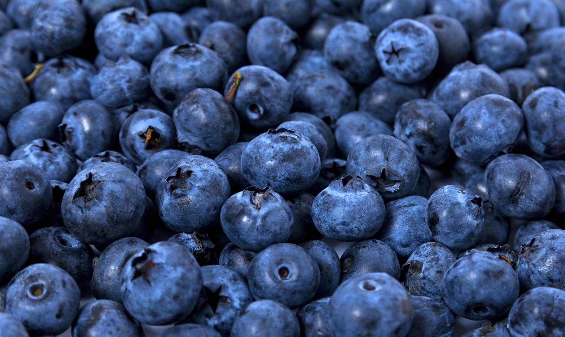 Beneficios de los arándanos para la salud