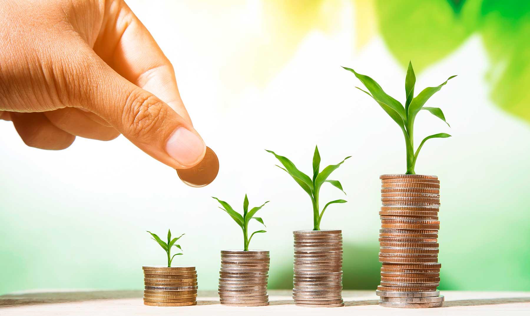 Inversiones ecológicas | Por qué son interesantes y cómo debes realizarlas