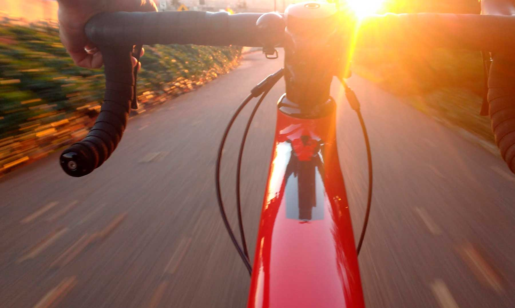 Ecoforest, a la vanguardia de las bicicletas eléctricas