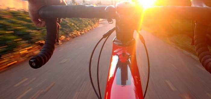 Ecoforest bicicleta eléctrica
