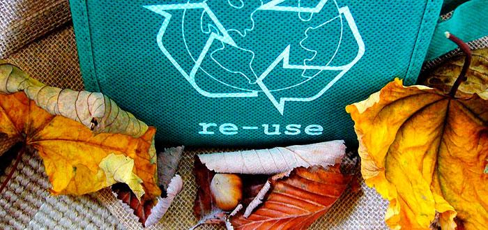 Hábitos responsables que contribuyen a salvar el ecosistema 2